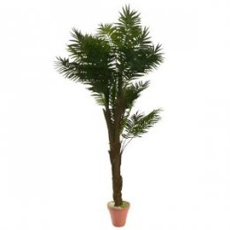 Location plantes artificielles palmiers bambous boule de for Plantes artificielles lyon